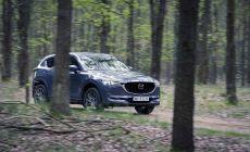 Mazda_CX-5_2020_Polymetal_Grey_Dynamiczne_PL_15.jpg
